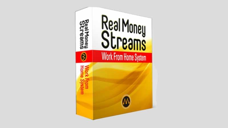 Real Money Streams Review, Health Support Hub