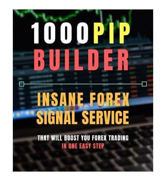 1000PIP Builder Review, Health Support Hub