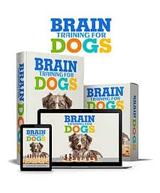 Brain Training For Dogs Review, Health Support Hub